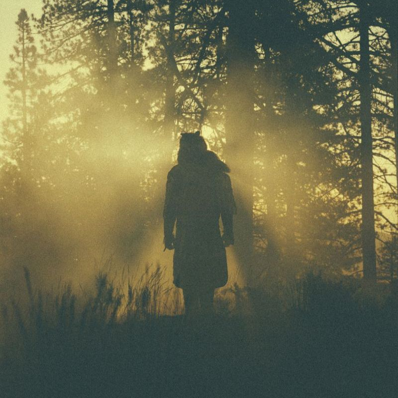 PAYNOMINDTOUS.IT Thundercat - The Beyond / Where The Giants Roam [Brainfeeder, BFDNL055, USA, 2015] 1