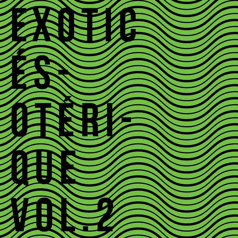 Various Artists - EXOTIC ÉSOTÉRIQUE Vol.2 [ArteTetra] + 'EXOTIC' Side Stream Pay no mind to us, we're just a minor threat.