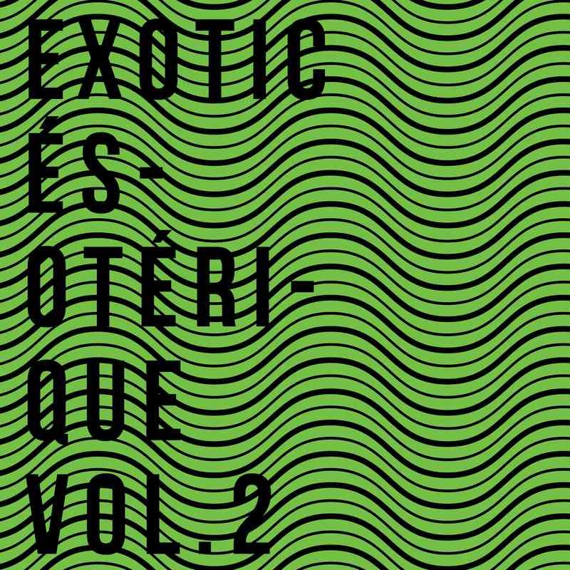 Various Artists - EXOTIC ÉSOTÉRIQUE Vol.2 [ArteTetra] + 'EXOTIC' Side Stream Pay no mind to us, we're just a minor threat.